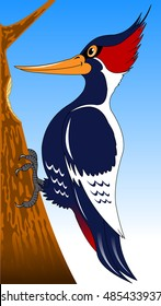cute and hardworking cartoon forest bird woodpecker