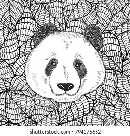 Cute head of chinese bear panda. Black and white illustration on leaves background for coloring.