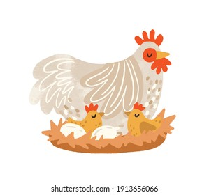 Cute hen on nest with eggs and hatched chickens. Domestic bird during laying and brooding. Colorful flat textured vector illustration isolated on white background