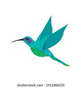 cute hummingbird flying animal nature icon vector illustration design