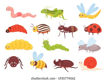 Cute insects set, colorful funny insects, grasshopper dragonfly worm spider fly ladybug
