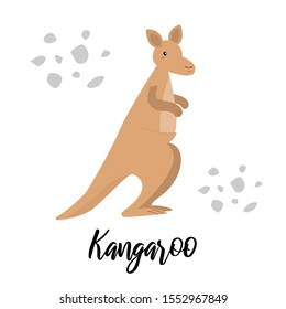 Cute kangaroo character with lettering isolated on white background. Vector illustration of australian animal, wild life and fauna.