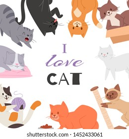 Cute kitty cat vector poster with different kitten breeds, toys, and food. Multi-colored pussycats with i love cat typography. Illustration