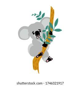 Cute koala baby cartoon flat style illustration. Little australian animal sits on eucalyptus tree. Small bear-like koala logo design.
