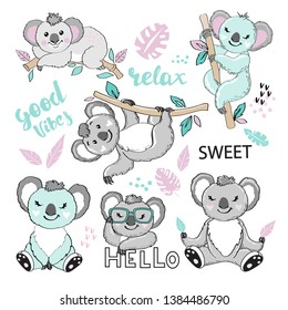 Cute koalas on a white background collection