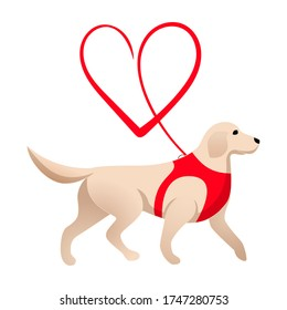 Cute labrador and red heart leash isolated on white background. Love and dogs template. Logo design for dog walking, training or dog related business. Dog walker or guide-dog concept.