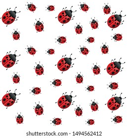 Cute ladybird white background pattern vector
