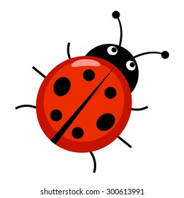 Marvelous Cute Ladybug Cartoon