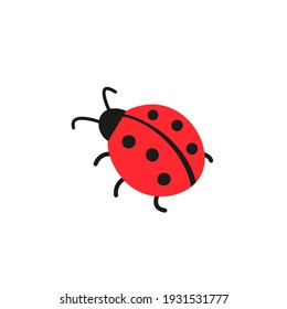 Cute ladybug or ladybird simple flat design red and black. Vector illustration isolated on white background