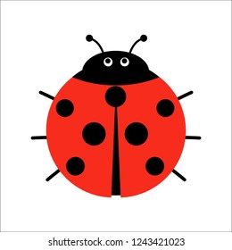 Cute Ladybug vector illustration in flat style. Cartoon beetle ladybug isolated from the background