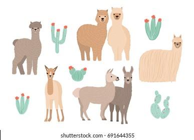 Cute Lama, Alpaca and cactuses set. Hand drawn cartoon colorful vector illustration