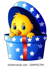 Cute little baby chicken inside a gift box