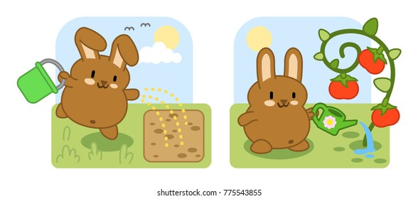 Cute little bunny sowing in garden, watering huge tomato plant (two vector illustrations)