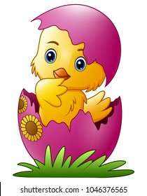 Cute little cartoon chick hatched from an egg isolated on a white background