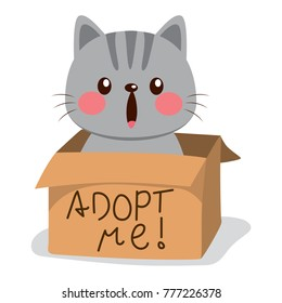 Cute little cat on a cardboard box with adopt me text