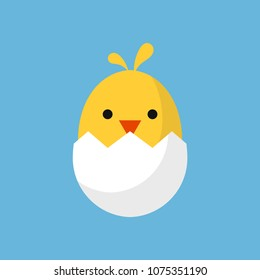 Cute little chick in cracked egg vector illustration