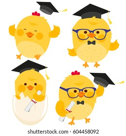 Cute little chickens with graduation hats and diplomas.