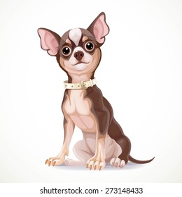 Cute little chihuahua dog wearing a collar vector illustration
