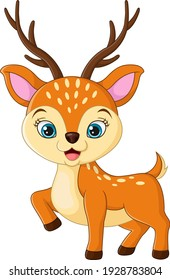 Cute little deer cartoon on white background