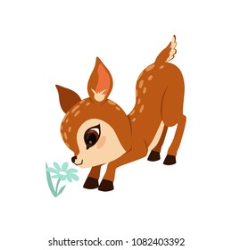Cute little fawn character sniffing flower vector Illustration on a white background