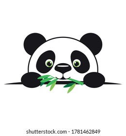 Cute little pandas are eating bamboo
