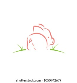 cute little Pig, pork tail logo illustrations