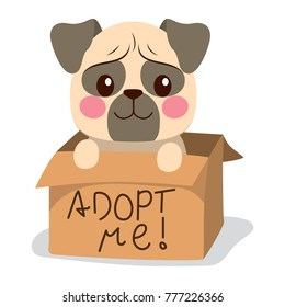 Cute little pug dog inside cardboard box with adopt me text
