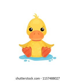 Cute little yellow duckling character sitting in a puddle vector Illustration on a white background