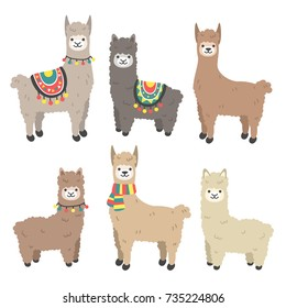 Cute llamas and alpacas. Funny smiling animals isolated on white