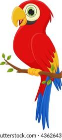 cute macaw bird cartoon