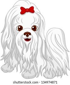 Cute Maltese dog cartoon