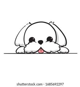 Cute Maltese White Puppy Cartoon Vector