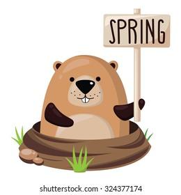 Cute marmot.Vector illustration.