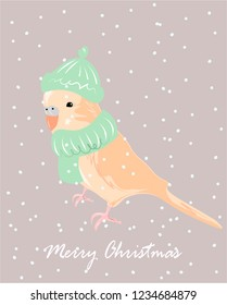 Cute merry Christmas poster design with vector budgerigar in scarf and hat.