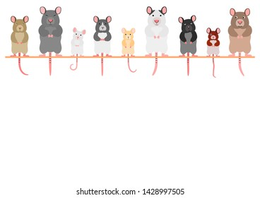 cute mice and rats in a row