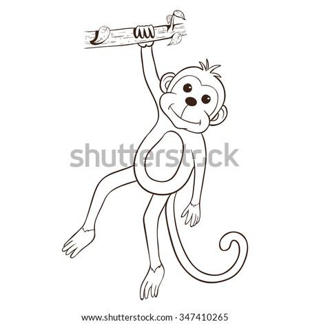Cute Monkey Out...