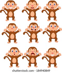 Cute monkeys in various expression