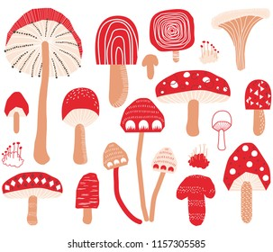 Cute Mushroom Collections Set