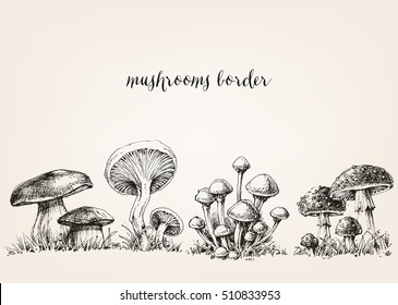 Cute mushrooms border, hand drawn collection