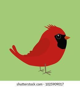 Cute northern cardinal