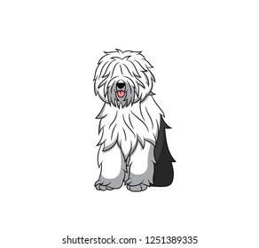 Cute Old English Sheepdog Cartoon Dog. Vector illustration of purebred old english sheepdog dog.