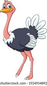 Cute Ostrich animal cartoon illustration