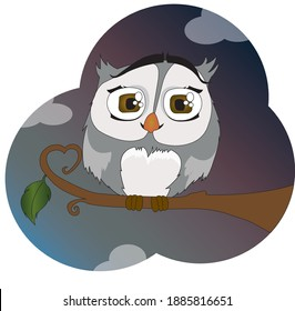 A cute owl that sits on a branch of a tree. It is getting dark and some clouds can be seen. The branch on which the owl is sitting still has one leaf and a shaped heart.