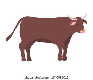 cute ox manger animal character vector illustration design
