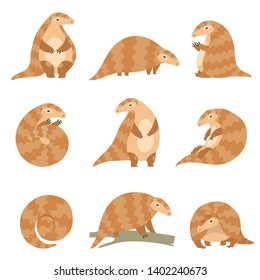 Cute Pangolin Animal in Various Poses Set, Rare Species of Animals Cartoon Vector Illustration