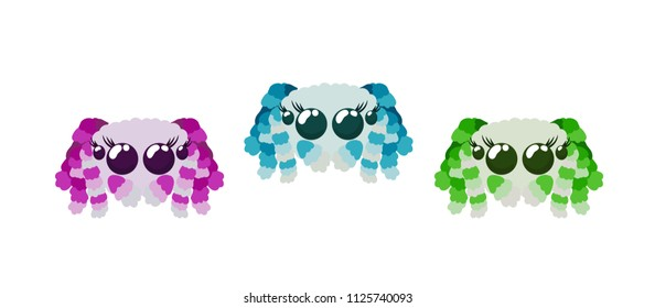 Cute peacock spiders set in red pink, green and blue colors isolated on white vector illustration