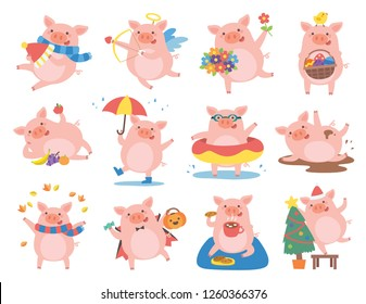 Cute pig in different situations. Symbol of the year in the Chinese 2019.