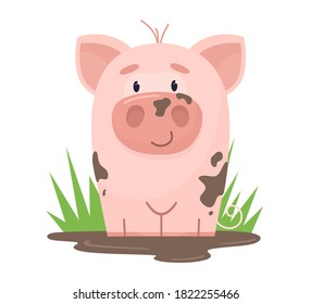 A cute pig is sitting in a mud puddle. Vector illustration in cartoon flat style.