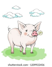 Cute piglet with rosy pink cheeks is standing on the grass. In the mouth eats a flower chamomile. In the sky cumulus clouds. Illustration in watercolor style