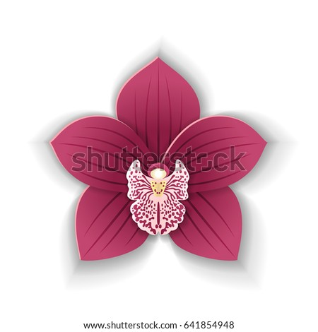 Cute Pink Orchid Flower Paper Art Stock Vector Royalty Free